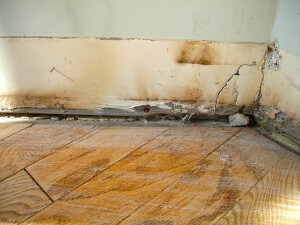 Water & Mold Damage-2
