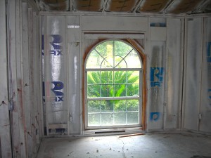 Mold Remediation-4