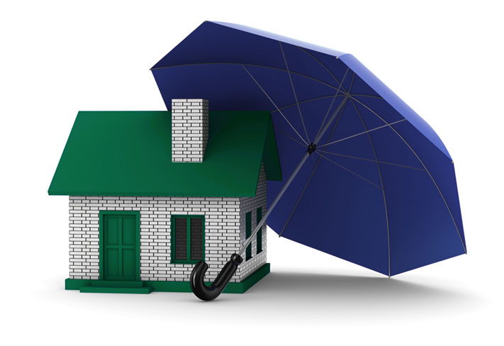 Insurance Claims Specialists