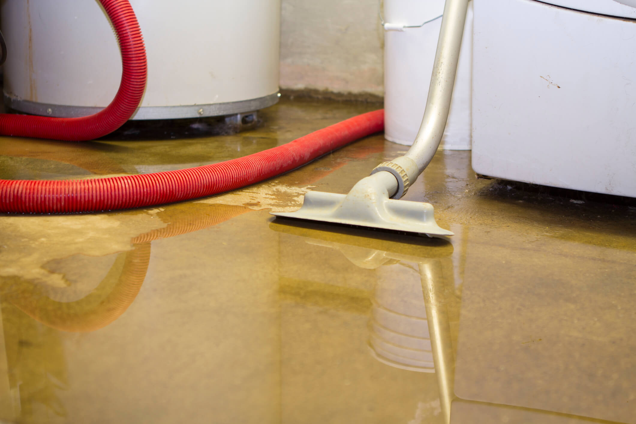 What You Should — And Shouldn't — Do After Water Damage