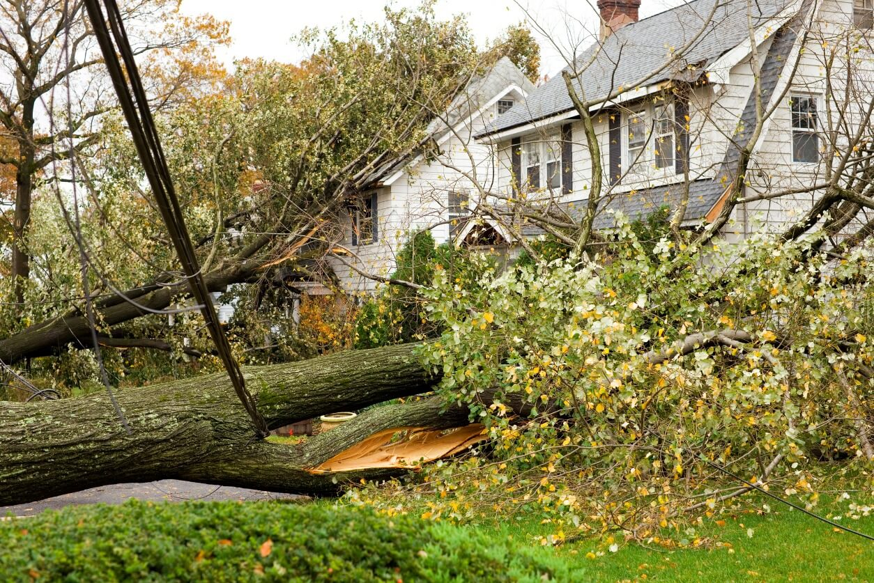 Most Common Types Of Homeowners Insurance Claims